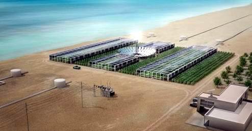 Proyek Hutan Sahara (mengubah gurun menjadi Oasis)