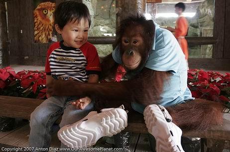 7 Tips Mengajak Si Kecil Berlibur ke Kebun Binatang