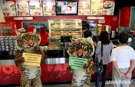 Kemasan KFC Merusak Hutan