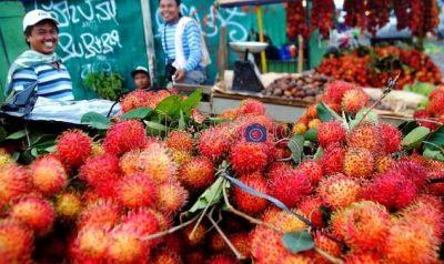 Pedagang Rambutan